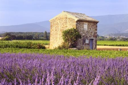 The Best of Rural France